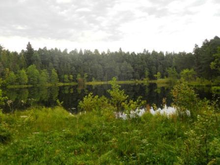 Un des lacs de la Pologne