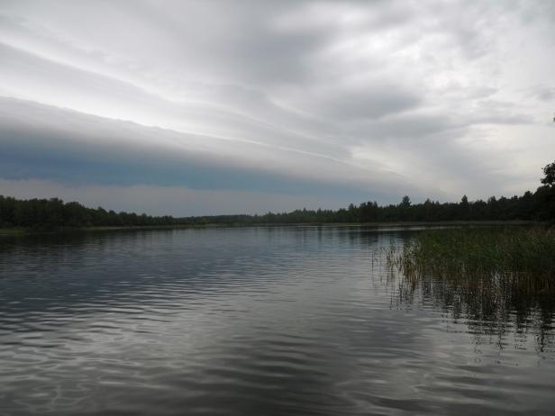Le lac de Suwalki en Pologne