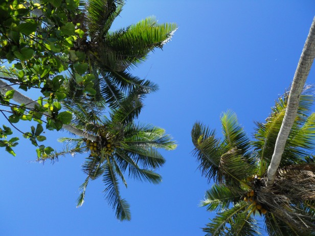 voyage-Polynésie-blog-BoraBora- (4)