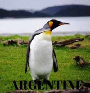 Blog-Voyages-Argentine