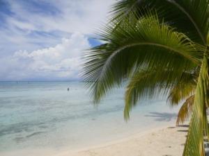 Le rêve Polynésien