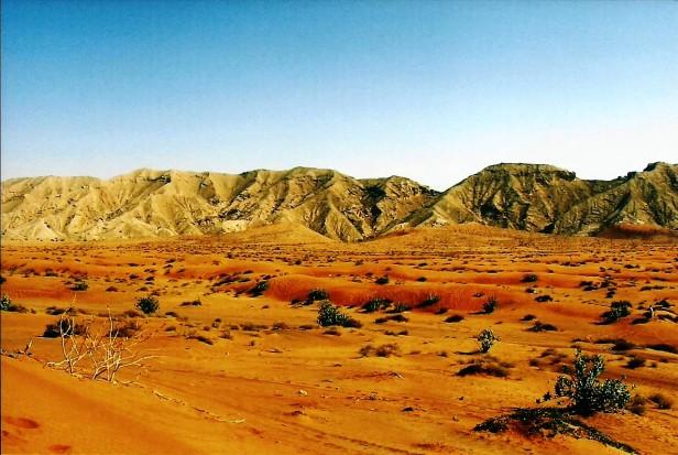 Voyage-Emirats Arabes Unis- Voyager- Blog (8)