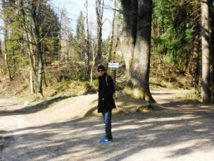 Parc Tivoli-Ljubljana-Slovénie-Blog-Voyages (2)