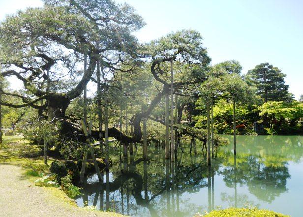 Voyage-Japon-Kanazawa-KenruokenGarden (3)