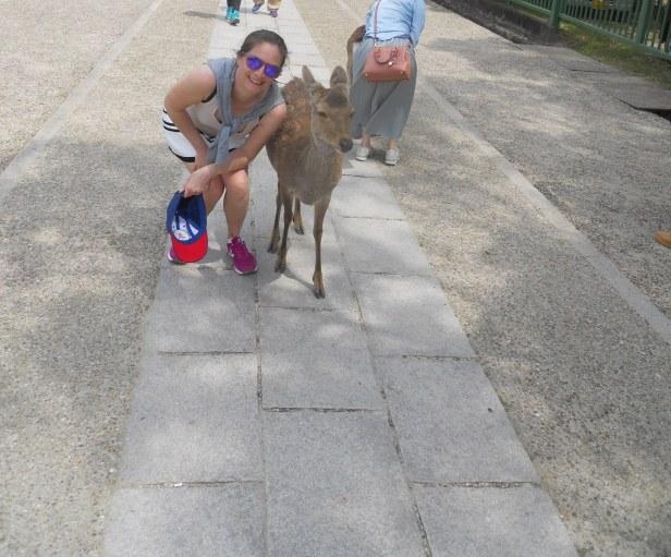Nara-Japon-BlogVoyage-Asie (3)